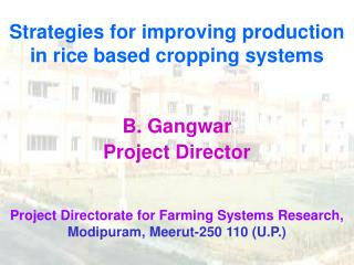 Strategies for improving production in rice based cropping systems    B. Gangwar Project Director  Project Directorate f
