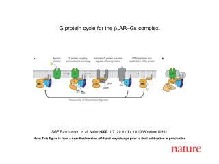 SGF Rasmussen  et al. Nature 000 , 1-7 (2011) doi:10.1038/nature10361
