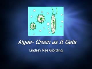 Algae- Green as It Gets