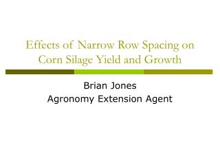 Effects of Narrow Row Spacing on Corn Silage Yield and Growth