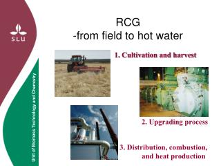 RCG -from field to hot water