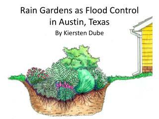 Rain Gardens as Flood Control  in Austin, Texas