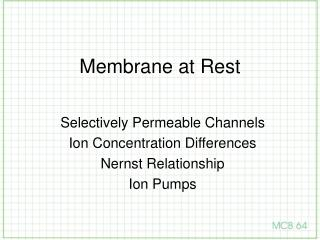Membrane at Rest
