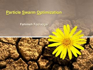 P article  S warm  O ptimization
