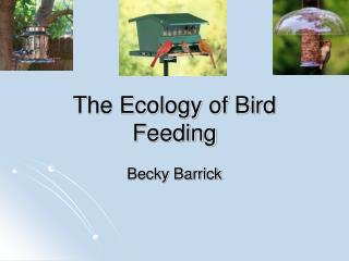 The Ecology of Bird Feeding