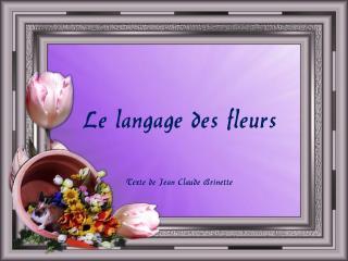 Le langage des fleurs   Texte de Jean Claude Brinette