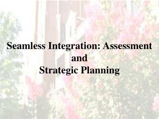 Seamless Integration: Assessment and Strategic Planning