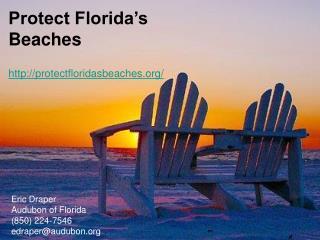 Protect Florida's Beaches protectfloridasbeaches/