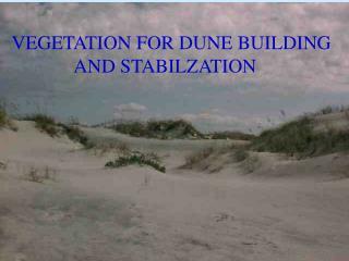 VEGETATION FOR DUNE BUILDING              AND STABILZATION