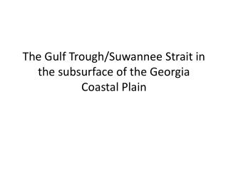 The Gulf Trough/Suwannee Strait in the subsurface of the Georgia Coastal Plain