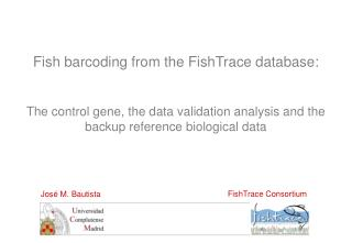 Fish barcoding from the FishTrace database: