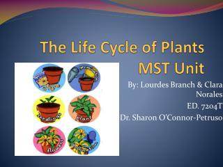 The Life Cycle of Plants MST Unit
