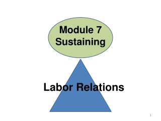 Module 7 Sustaining