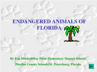 ENDANGERED ANIMALS OF FLORIDA