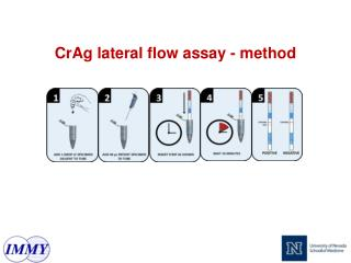 CrAg lateral flow assay - method