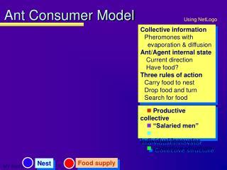 Ant Consumer Model
