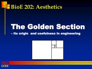 BioE  202: Aesthetics