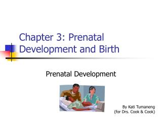 Chapter 3: Prenatal Development and Birth