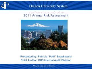 2011 Annual Risk Assessment
