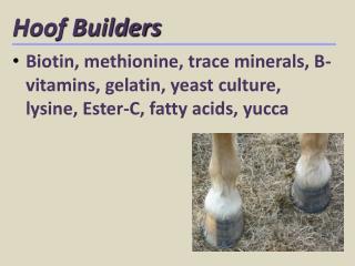 Hoof Builders
