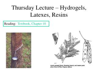 Thursday Lecture   Hydrogels, Latexes, Resins