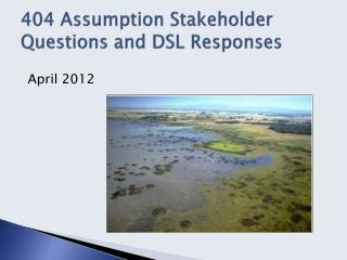 404 Assumption  Stakeholder  Questions and DSL Responses
