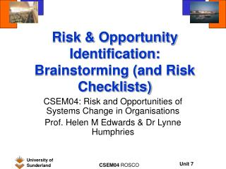 Risk & Opportunity Identification: Brainstorming (and Risk Checklists)