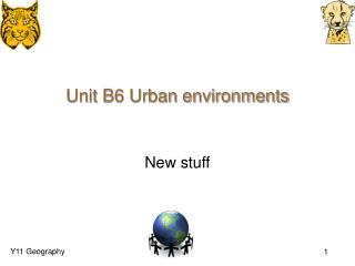 Unit B6 Urban environments