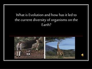 What is Evolution and how has it led to the current diversity of organisms on the Earth?