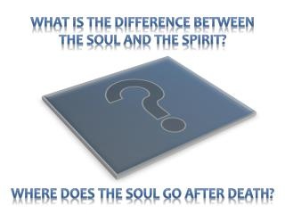What is the difference between           the soul and the spirit?