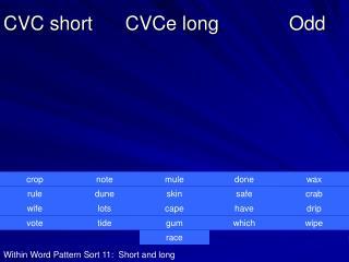 CVC short      CVCe long             Odd
