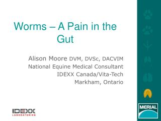 Worms – A Pain in the Gut