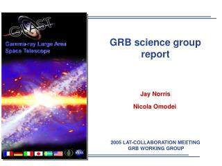 GRB science group report