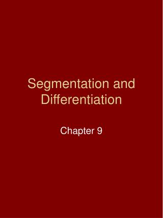 Segmentation and Differentiation