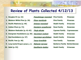 Review of Plants Collected 4/12/13