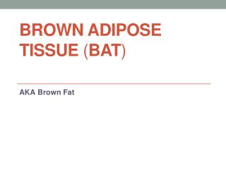Brown Adipose  T issue  ( BAT )