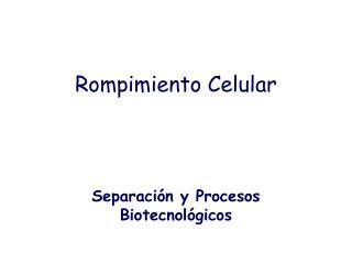 Rompimiento Celular