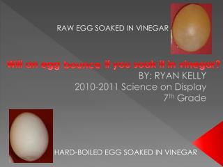 Will an egg                if you soak it in vinegar?