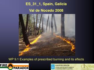 ES_31_1, Spain, Galicia  Val de Nocedo 2008 WP 9.1 Examples of prescribed burning and its effects