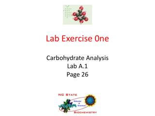 Lab Exercise 0ne