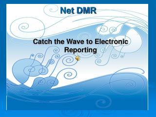 Net DMR