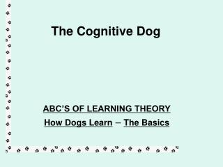 The Cognitive Dog