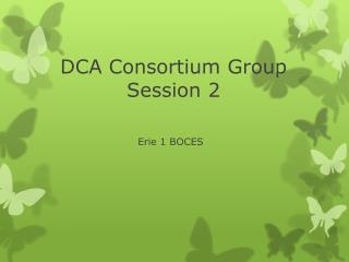 DCA Consortium Group Session 2
