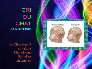 C R I     D U C H A T SYNDROME by: Olivia Gerald                12|o9|2011 Mrs. Abrams