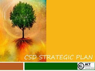 CSD Strategic Plan