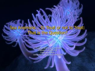 Sea Anemone�.To Treat or not to Treat: That is the Question?
