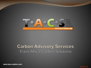 Carbon Advisory Services Trans Africa Carbon Solutions
