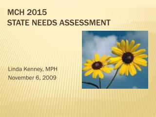 MCH 2015  State Needs Assessment
