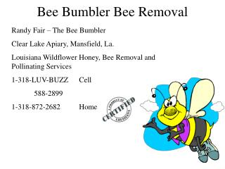 Bee Bumbler Bee Removal