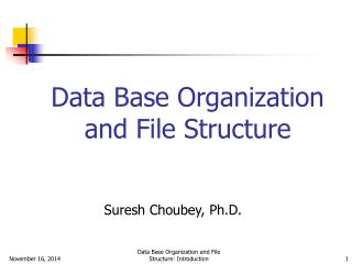 Data Base Organization and File Structure